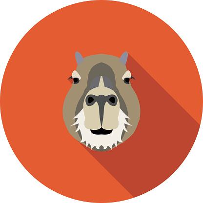 flat icon a capybara