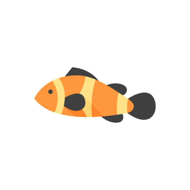 Flat icon - Clown fish Clown fish icon in flat color style. Animal sea adorable beach coral reef suave stock illustrations