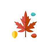 Flat icon - Maple leaves