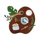 Flat lay natural cosmetics ingredients - plants, coconut. Top down view of homemade organic cosmetic. Hand made beauty products. Cosmetic made at home concept. Flat vector illustration