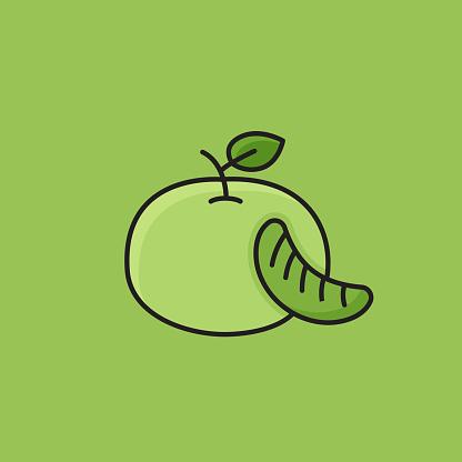 Flat Line Design Style Mandarin Icon, Outline Symbol Vector Illustration
