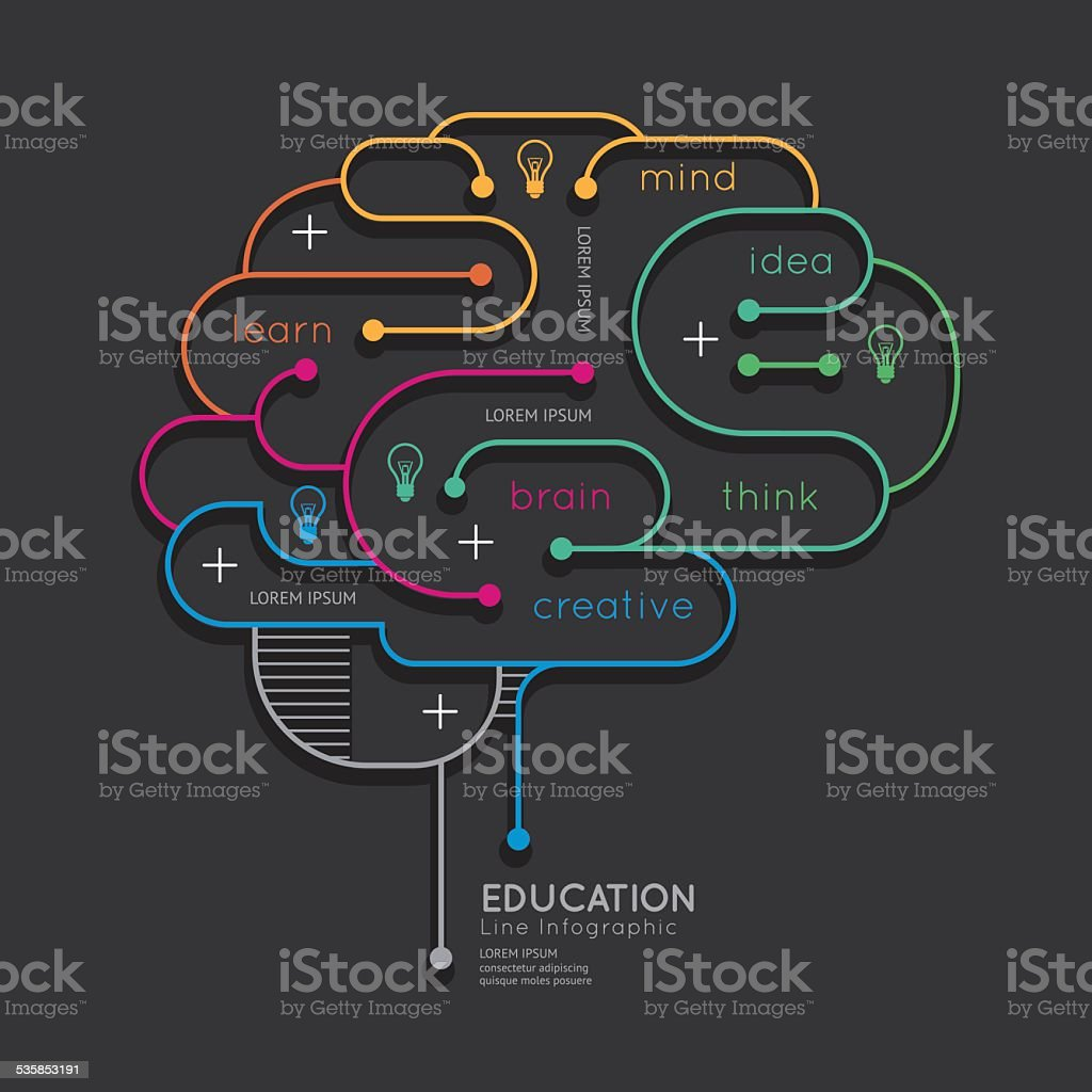 Flat linear Infographic Education Outline Brain Concept.Vector vector art illustration