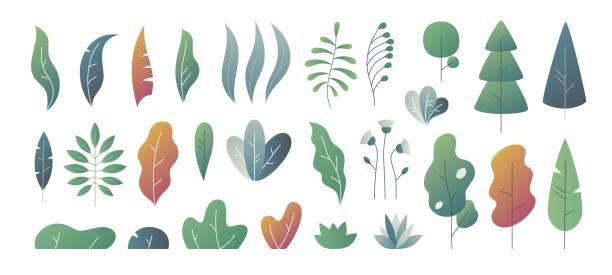 ilustrações de stock, clip art, desenhos animados e ícones de flat minimal leaves. fantasy colors gradation, leaves bushes and trees design templates, nature gradient plants. vector cute leaves - plantar