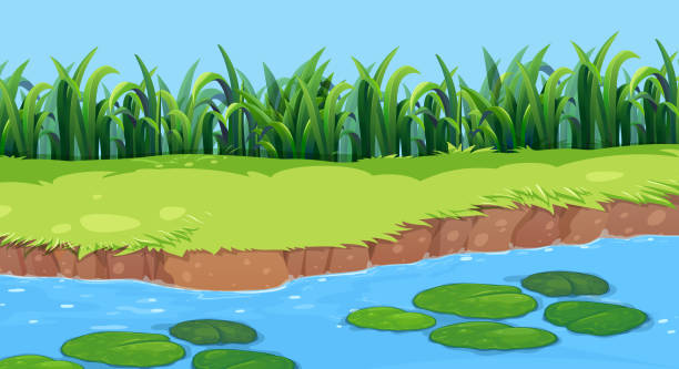 Flat nature pond landscape Flat nature pond landscape illustration pond stock illustrations