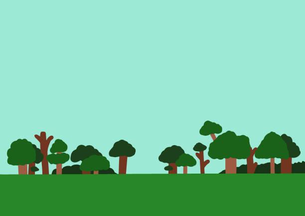 mieszkanie krajobrazu zalane wodą zielone naturalne drzewa leśne tło - jungle stock illustrations