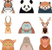 Flat set of asian animals