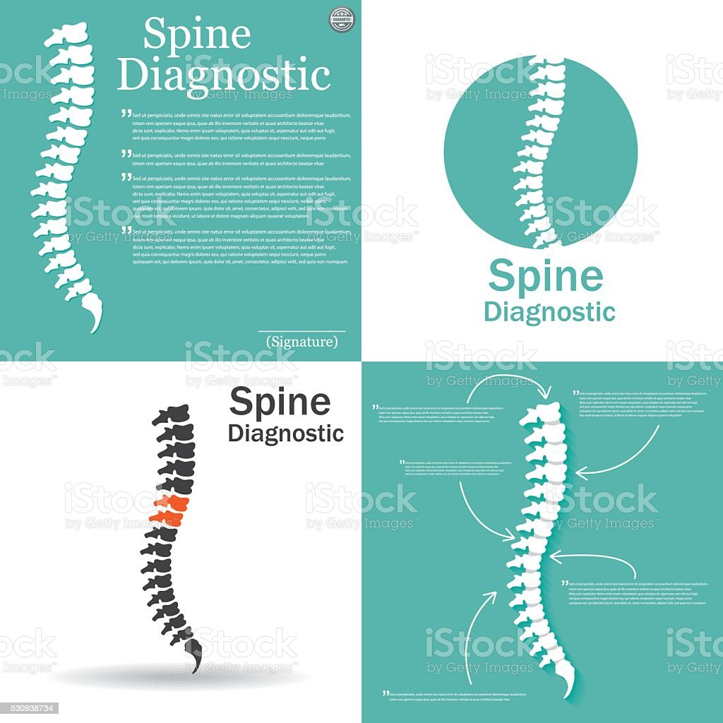 Flat spine icon for orthopedic therapy, diagnostic center. vector art illustration