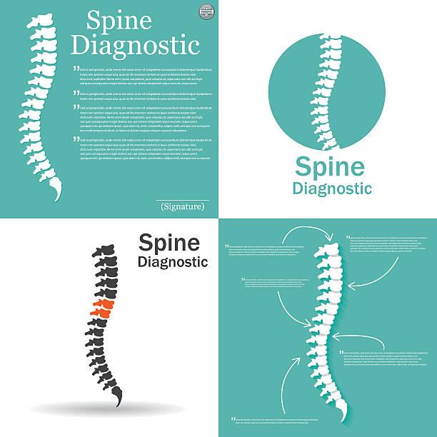 illustrations, cliparts, dessins animés et icônes de icône de la colonne vertébrale pour un soin orthopédique, diagnostic centre. - chiropracteur