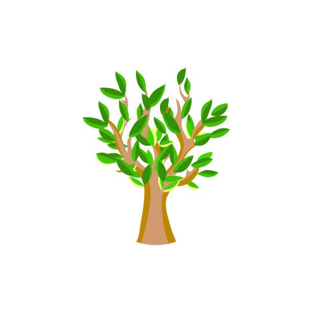 Icono de árbol plano verano verde aislado sobre fondo blanco - ilustración de arte vectorial