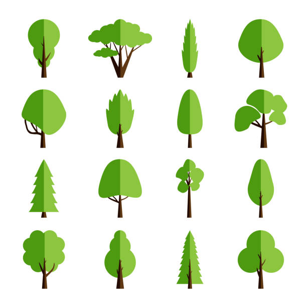 Flat tree collection. Set of isolated icons forest trees. Vector illustration vector art illustration
