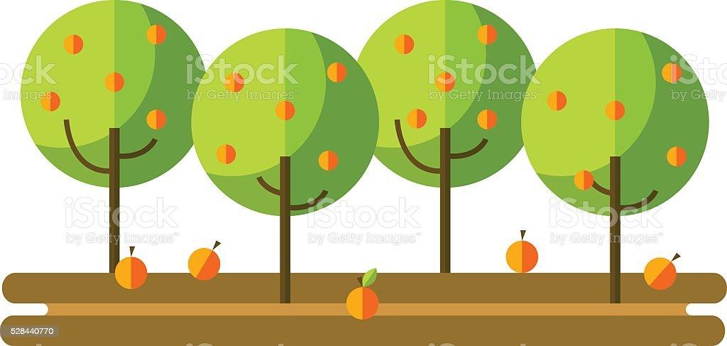 Flat vector illustration apple orchard and harvest fruit vector art illustration