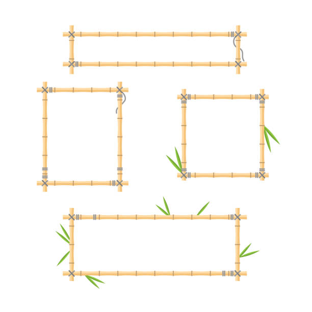 Flat vector illustration with wood stick frame background collection. Handmade tropical bamboo branch with leaves and ropes for holiday posters and jungle signboards. vector art illustration