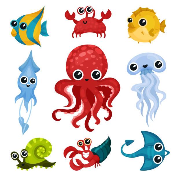 flache vektor-set von verschiedene meerestiere. meerestiere mit glänzenden augen. fisch, tintenfisch, meeresschnecke, qualle, tintenfisch, krabben - kalamar stock-grafiken, -clipart, -cartoons und -symbole