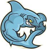 Flexing Hammerhead Shark
