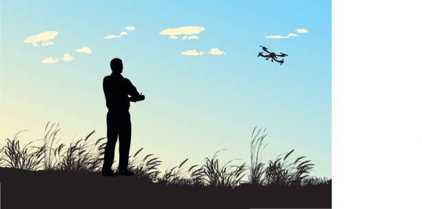 Flight Hobby A vector silhouette illustration of an adult man playing with a remote controlled flying drone in a field with wind blown reeds and against a blue sky. test drive stock illustrations