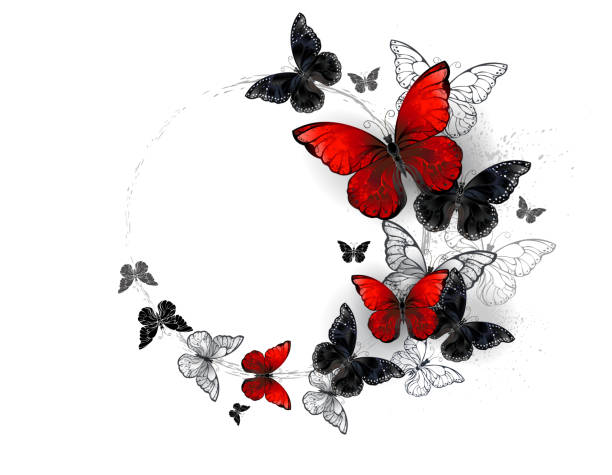 Flight of black and red butterflies morpho Flying black and red, realistic morpho butterflies on white background. swarm of insects stock illustrations