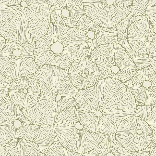 Floating Lotus Leaf vector art illustration