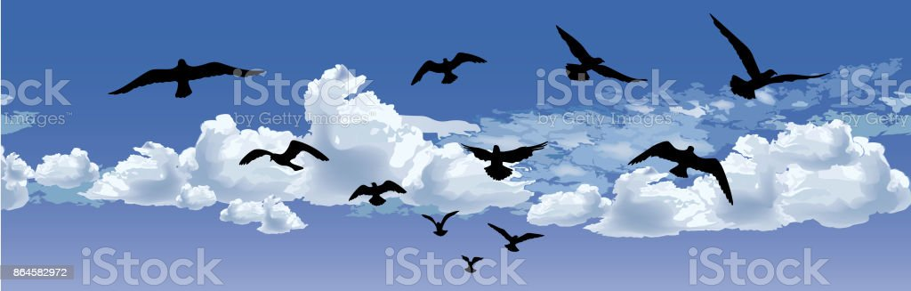Bird flying silhouette over blue sky background. Animal wildlife...