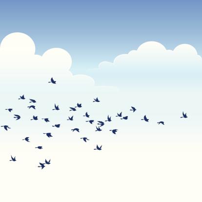 Stado Ptaków - Stockowe grafiki wektorowe i więcej obrazów Bezchmurne niebo