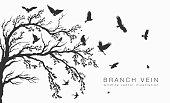 flock of flying birds on tree branch tree