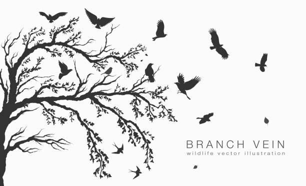 bildbanksillustrationer, clip art samt tecknat material och ikoner med flock flygande fåglar på träd gren träd - lem kroppsdel