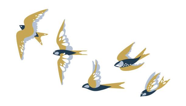 stockillustraties, clipart, cartoons en iconen met een kudde vliegende vogels slikt. vector illustratie. - zangvogel