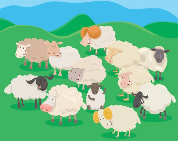 Best Sheep Pen Illustrations, Royalty-Free Vector Graphics ...