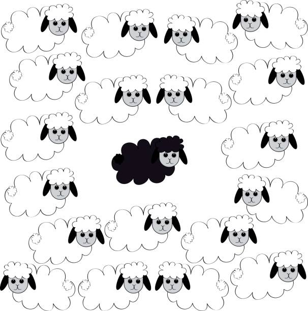 Best Flock Of Sheep Illustrations, Royalty-Free Vector