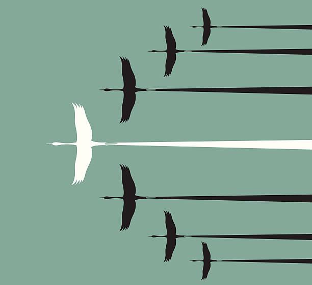Flock of stork flying in the sky, Flock of stork flying in the sky, Leadership concept goose bird stock illustrations