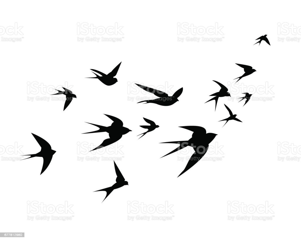 A flock of swallow birds go up vector art illustration