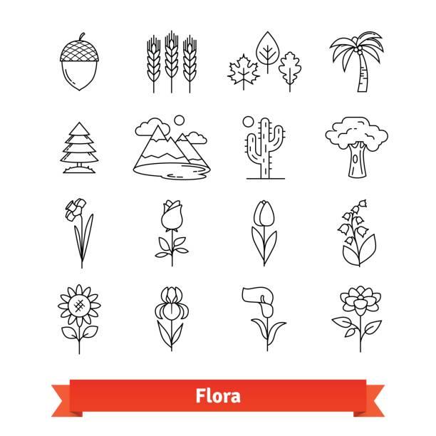 Flora thin line art icons set. Plants life Flora thin line art icons set. Flowers, trees, plants life naturally occurring, botanical garden landscape. Linear style symbols isolated on white. iris plant stock illustrations