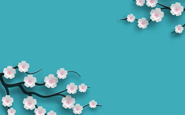 stockillustraties, clipart, cartoons en iconen met florale achtergrond versierd bloeiende kersen bloemen tak, helder blauwe achtergrond voor lente tijd seizoen ontwerp. banner, poster, flyer met plaats voor uw tekst. papier gesneden uit stijl, vector - bloesem