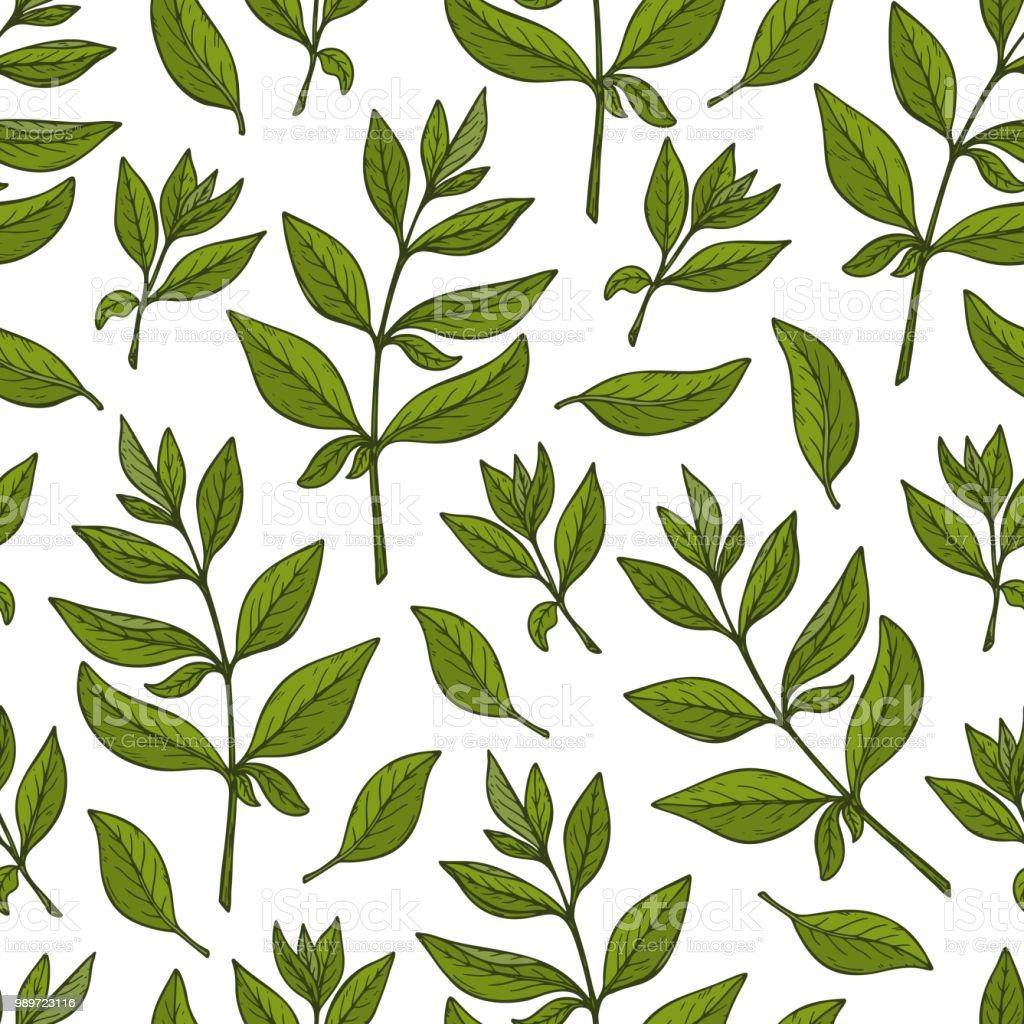 Ilustracao De Fundo Floral Folhas Padrao Sem Emenda Planta Do Henna