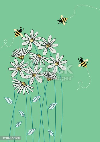 istock Floral background . 1204377680
