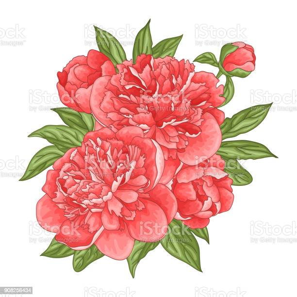 Floral background with a bouquet of peony flowers vector id908256434?b=1&k=6&m=908256434&s=612x612&h=xvarte5s9o0fuktts317i uozp8juqyorfzsxjrzf3q=