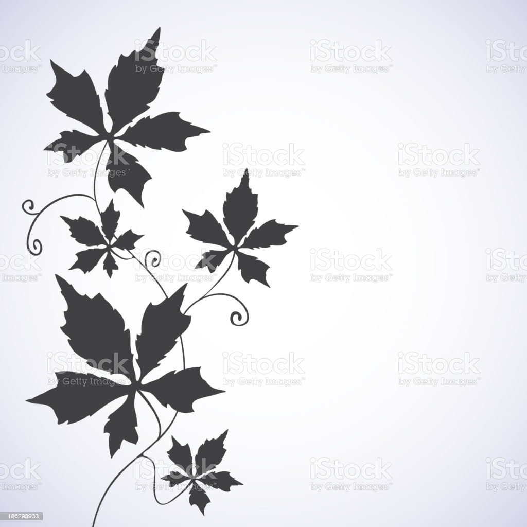 Floral background with a vine. royalty-free stock vector art