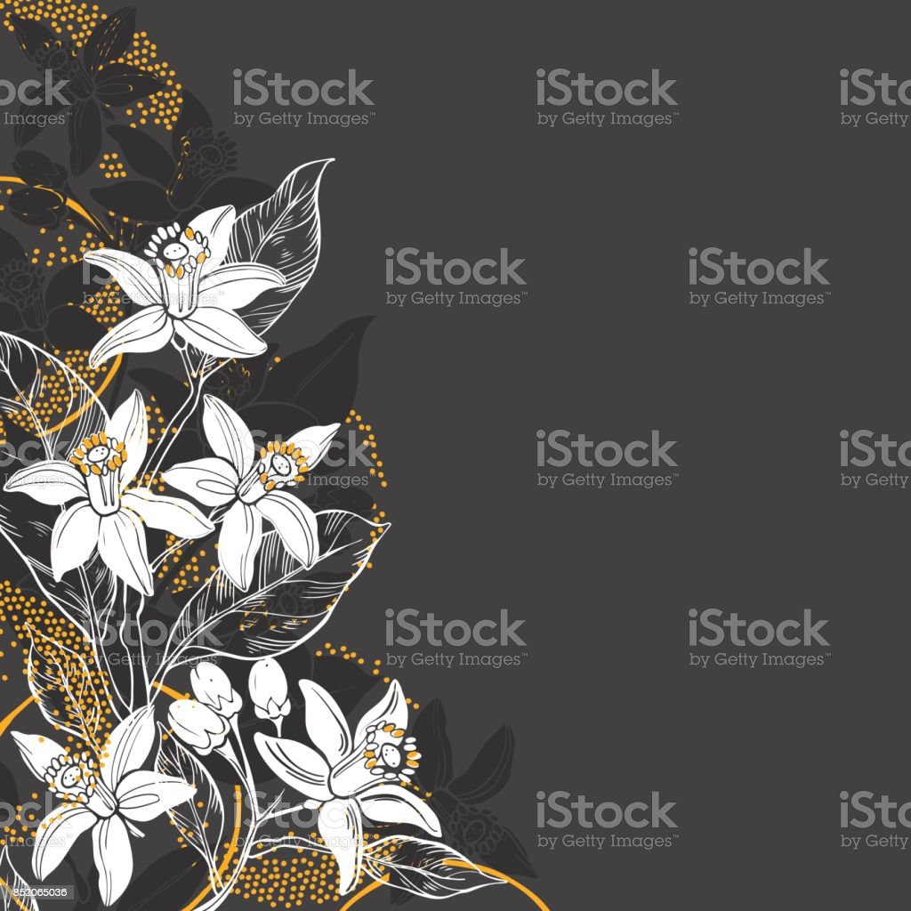 Floral Background With Hand Drawn Branches Of Flowers Neroli And Orange Fruit Vector Illustration