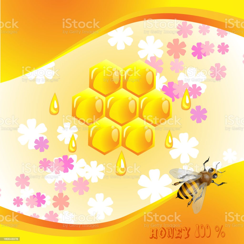 Floral background with honey royalty-free floral background with honey stock vector art & more images of animal body part