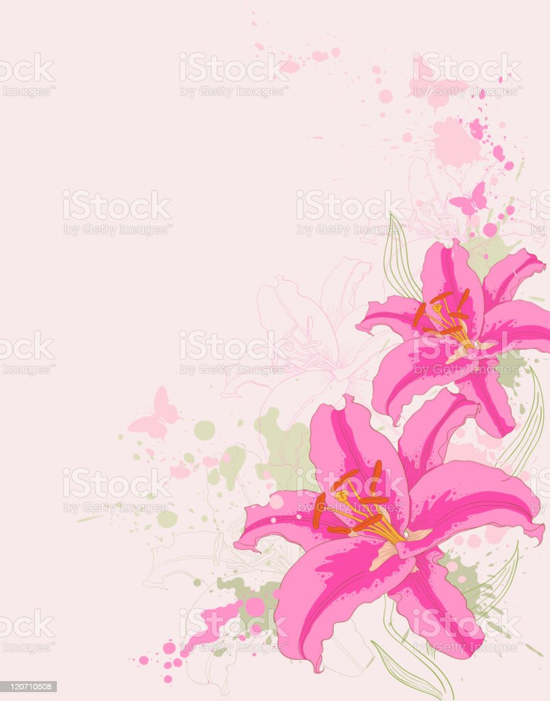 floral background with pink lily royalty-free floral background with pink lily stock vector art & more images of blob