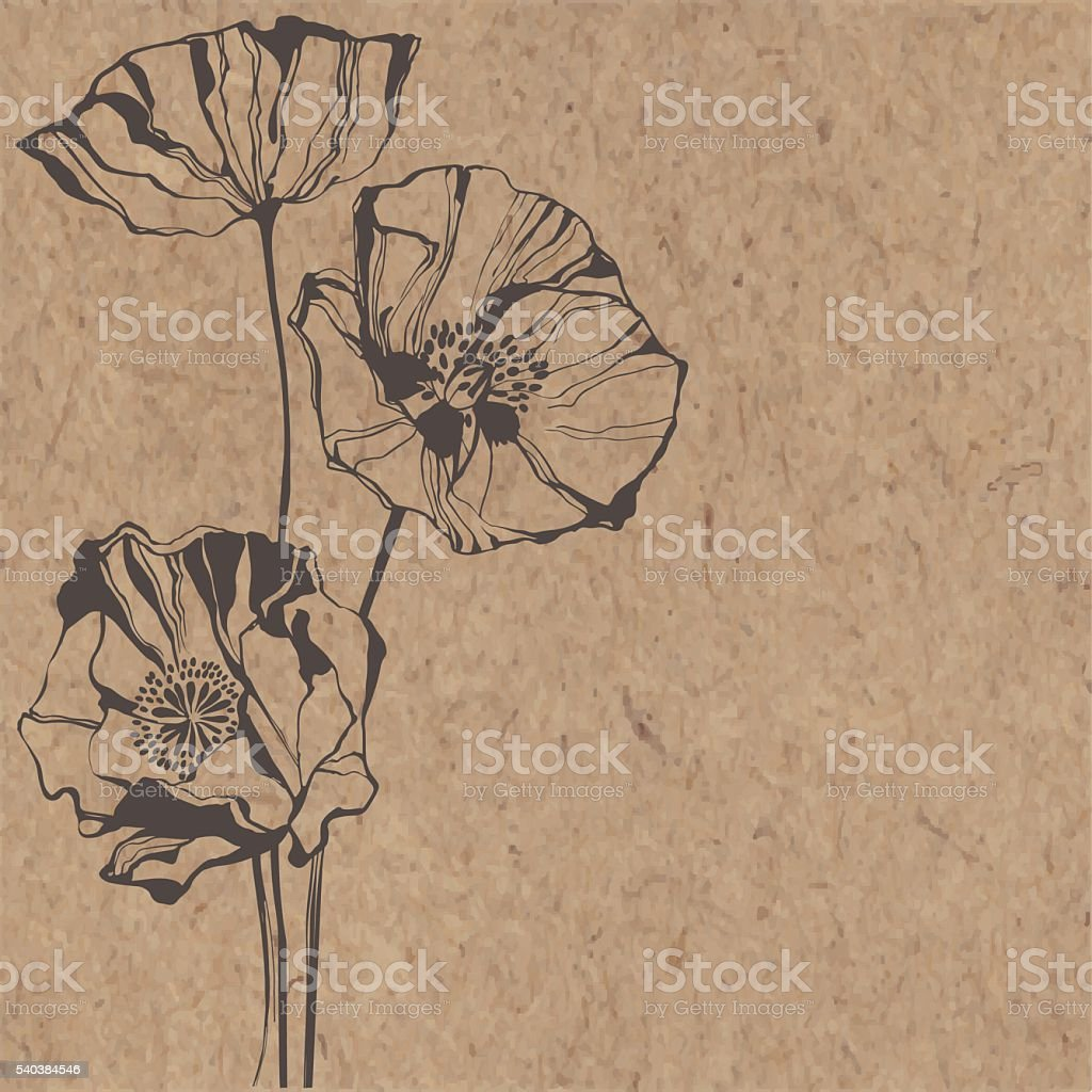 Floral background with poppies on kraft paper. vector art illustration