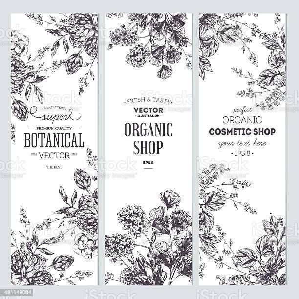 Floral banner collection organic shop vector illustration vector id481149084?b=1&k=6&m=481149084&s=612x612&h=obdfe79btu5okc4w8 4vpafqgx2kb2m3244jc2nqusc=