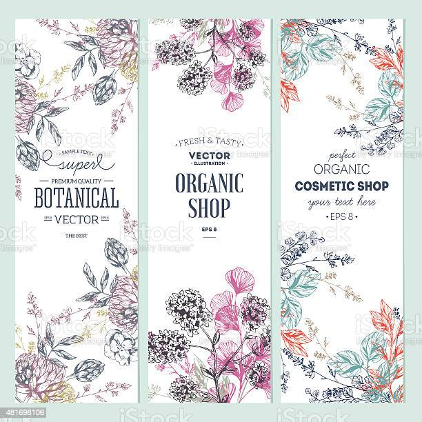 Floral banner collection organic shop vector illustration vector id481698106?b=1&k=6&m=481698106&s=612x612&h=2xfrolwzk8v2wfnqt10jbhhtmmrguw6xzyvxzad 2qc=