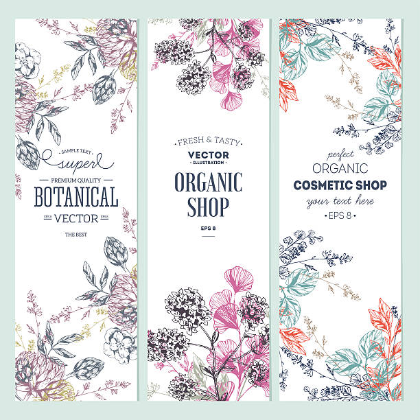 floral banner collection. organic shop. vector illustration - vintage nature stock illustrations, clip art, cartoons, & icons