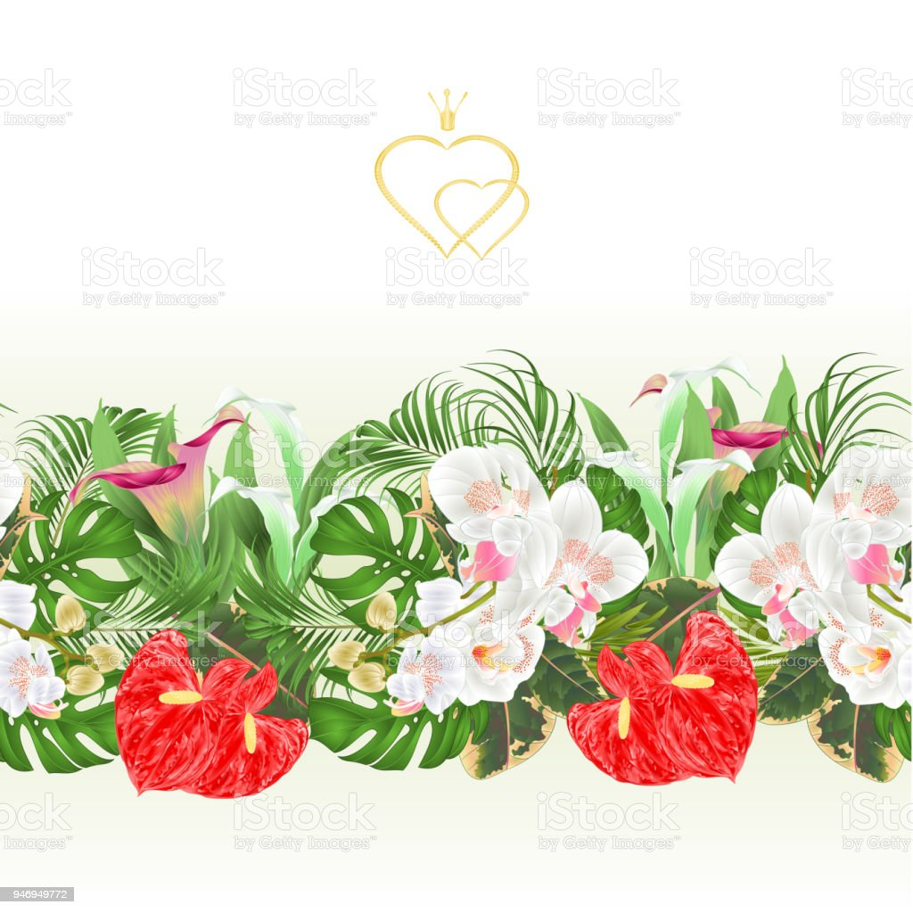 Floral Border Seamless Background Bouquet With Tropical Flowers