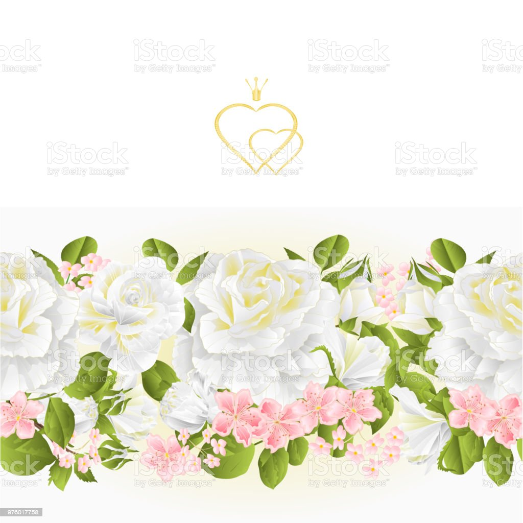 Floral Border Seamless Background White Roses Vintage Vector