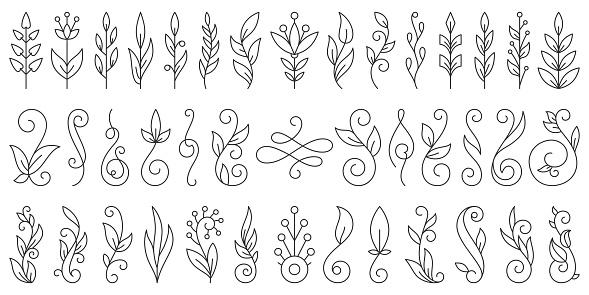 Floral Branch ornament simple line icon vector set