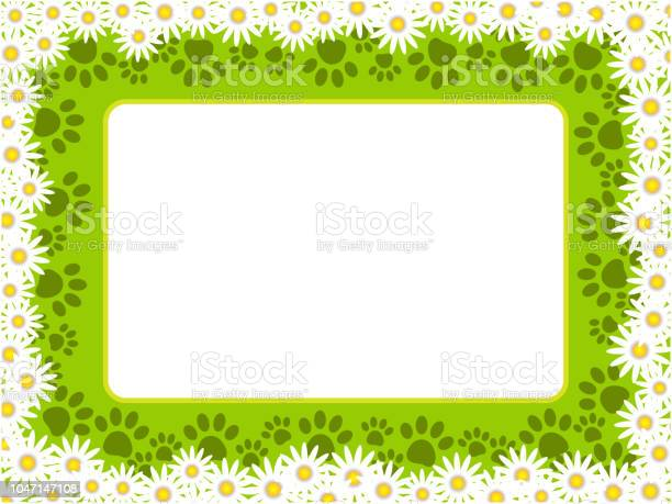 Floral chamomiles frame with paw prints and copy space for text vector id1047147108?b=1&k=6&m=1047147108&s=612x612&h=xp2nd3y87hhizdgcgnybnhrvw96yquxenvf5lepnt4u=