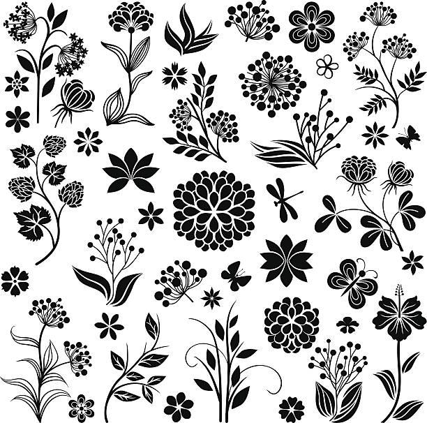 Blumenkollektion – Vektorgrafik