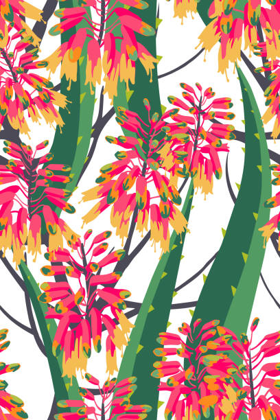 Floral composition. Vector seamless pattern with aloe flowers. Botanical background. Floral composition. Vector seamless pattern with aloe flowers. Botanical background. sharp stock illustrations