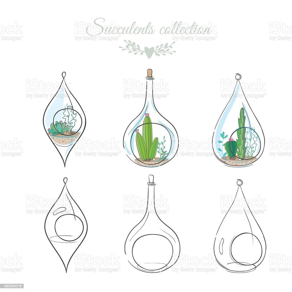 Composizioni Floreali Con Piante Grasse In Vasi Di Vetro Decorativi